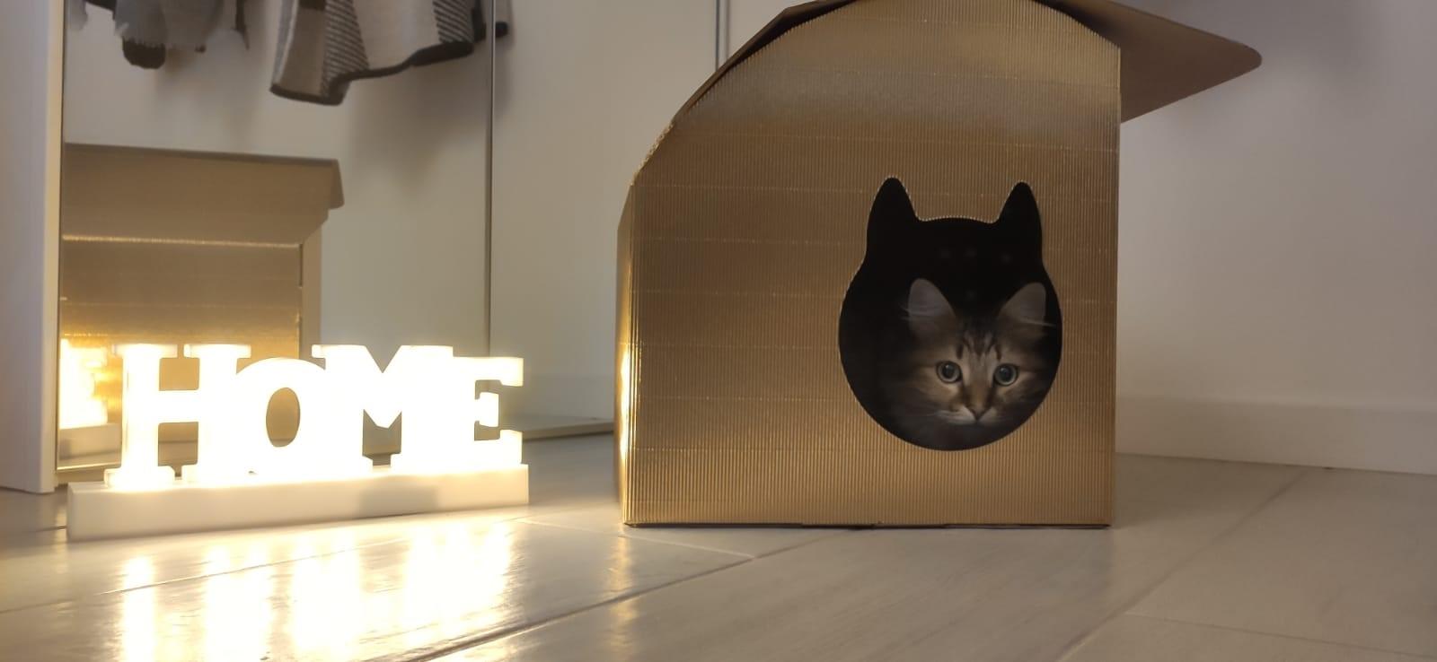 cuccia per gatti wooly home